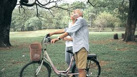 kilka park starszy uśmiecha porozmawiać zdjęcie wideo