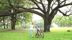 kilka park starszy uśmiecha porozmawiać zbiory wideo