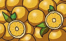 Kilka pomarańcze ilustracyjne Zdjęcia Royalty Free