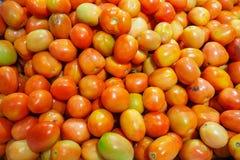Kilka pomidory fotografia royalty free