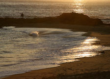 kilka seashore Obraz Royalty Free