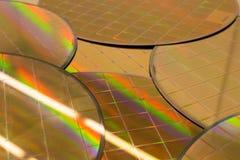 Kilka Silikonowi opłatki z mikroukładami - opłatek jest cienkim plasterkiem półprzewodnika materiał tak jak krystaliczny silikon, fotografia royalty free