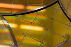 Kilka Silikonowi opłatki z mikroukładami - opłatek jest cienkim plasterkiem półprzewodnika materiał tak jak krystaliczny silikon, zdjęcia royalty free
