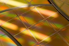 Kilka Silikonowi opłatki z mikroukładami - opłatek jest cienkim plasterkiem półprzewodnika materiał tak jak krystaliczny silikon, obraz stock
