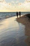 kilka spacer na plaży obraz royalty free