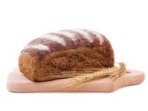 Kilka ucho banatka i czarny chleb na drewnianej desce Zdjęcia Royalty Free