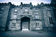 Kilkenny Castle Royalty Free Stock Photo