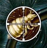 Kill Lice Stock Photography