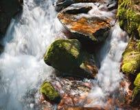 Scenic Rapids in Kill Pecker Creek, in the Laramie Mountains of Northern Colorado. Kill Pecker Creek. Scenic landscape of the Northern Colorado Laramie Mountains royalty free stock photo