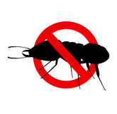 Kill Termite Insect Sign Royalty Free Stock Photography