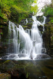 killarney国家公园torc瀑布 库存照片