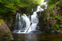 killarney国家公园torc瀑布 免版税图库摄影