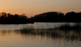 killarney湖leane港湾scenics 库存照片