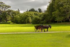 Killarney Irlande, tour de cheval en parc national de Killarney Photo stock