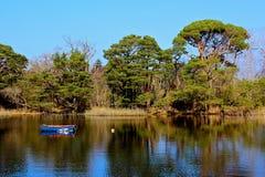 killarney lake Royaltyfri Foto