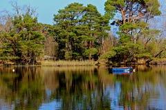 killarney lake Royaltyfria Bilder