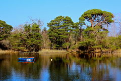 Killarney lake. National park ireland Royalty Free Stock Photo