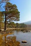 Killarney lake Stock Images