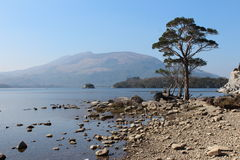 Killarney lake. National park ireland Stock Image