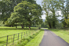 Killarney National Park; County Kerry Stock Images