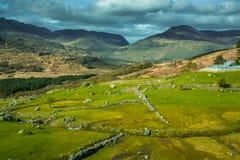 Free Killarney National Park Landscape Royalty Free Stock Photos - 92620798
