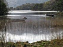 Killarney national park Royalty Free Stock Photography
