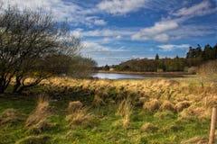 Killarney national park Stock Photography