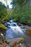 killarney park narodowy Zdjęcie Stock