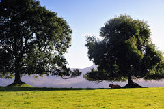 killarney park narodowy Obrazy Stock