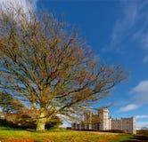 Killeen Castle. Ireland Royalty Free Stock Images