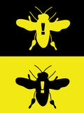 Killer Bee. A killer bee in yellow and black with warning explanation mark. Fully scalable  illustration Royalty Free Stock Photo