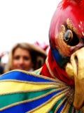 Killer instinct. Bird mask at the Venice carnival Royalty Free Stock Photos