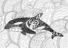 Killer whale with high details. Adult antistress coloring page with orca. Black white animal for art therapy. Abstract pattern with oceanic elements for relax Stock Images