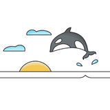 Killer whale jumping out of the water isolated vector illustration. Sunset and clouds on the background Stock Photo