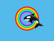 Killer whale jumping in rainbow ring Stock Images