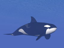 Killer whale underwater - 3D render Stock Photo