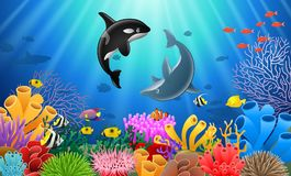 Killer whales and dolphin cartoon. With underwater view and coral background Stock Images