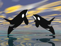 Killer whales jump - 3D render Royalty Free Stock Photography