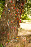 Killing drzewo Odpowiada przeciw któremu biją dzieci kaci - Choeung Ek Killing Zdjęcia Royalty Free
