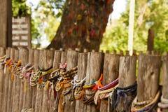 Killing drzewo Odpowiada przeciw któremu biją dzieci kaci - Choeung Ek Killing Obraz Stock