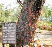 Killing drzewo przeciw któremu biją dzieci kaci Zdjęcia Stock