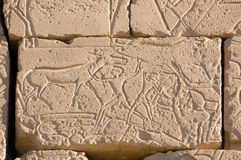 Killing a horse in Battle, Ramesseum, Luxor Royalty Free Stock Images