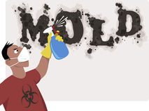 Killing mold Stock Image