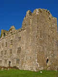 Kilmacdaugh Castle Ruins 01 Royalty Free Stock Photography