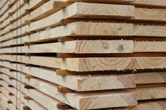 Kiln Dried Pine Planks stock image