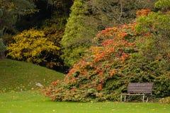 Kilruddery之家&庭院。 长凳。 爱尔兰 免版税库存图片