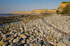 Kilve beach in Somerset. Famous for its fossila and being on the West Somerset Walk Royalty Free Stock Photo