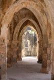 kilwakisiwani Arkivfoto