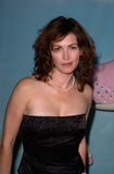 Kim Delaney Stock Images