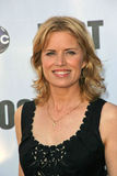 Kim Dickens Stock Photos